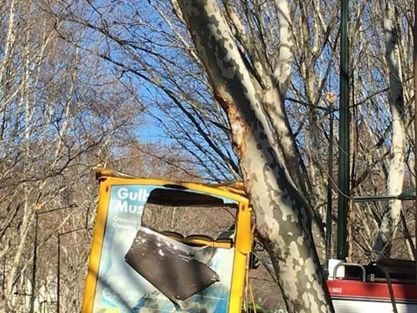 Autocarro choca com árvore em Lisboa e faz 12 feridos